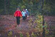 Ohjattua luontoliikuntaa ryhmille, Koihu Adventures, Ilomantsi